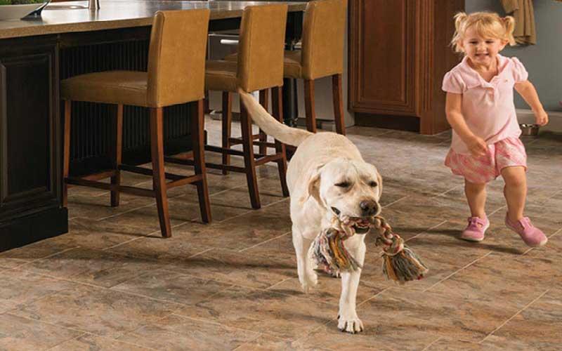کفپوش برای حیوانات خانگی